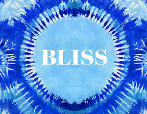 Bliss: Transformational Festivals & the Neo Hippie by Schapiro, Steve -Hcover