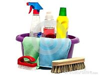 Domestic House Cleaning £10/hour