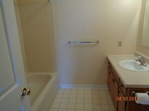 Cozy 2 bedroom in Clinton Stratford Kitchener Area image 4
