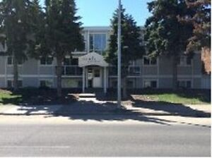 Newly Renovated Condo on Whyte Ave