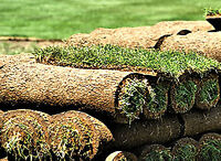 Woodstock Sod Installation - Residential and Commercial