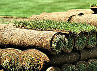 Durham Sod Installation - Residential and Commercial