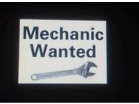 **Mechanic Wanted 100 pounds per day call Now