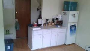 1 Bedroom Apartment-Close to Downtown