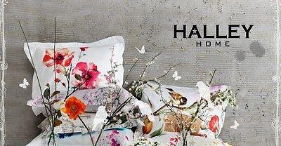 halley-berlin