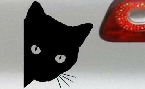 Katzen Aufkleber Vergleich Test Katzen Aufkleber Topseller