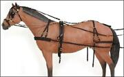 Pony Horse Harness