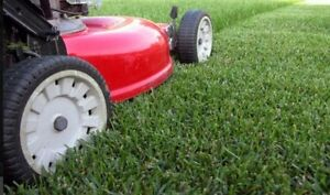 Varcoe's lawn care, call today for an estimate!
