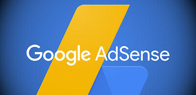 Professional Website Monetized With Google Adsense