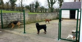 N.Irelands leading supplier V- Mesh fence panels