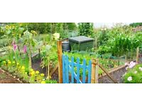 Large Allotment plot for free usage