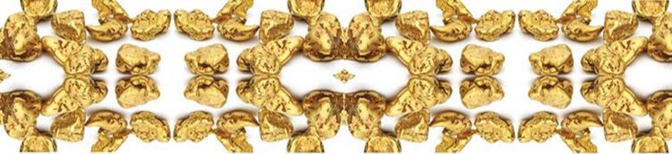 golddiggersmetaldetectors