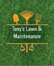 Tony's Lawn & Maintenance Parramatta Parramatta Area Preview