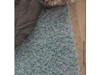 Large duck egg blue rug