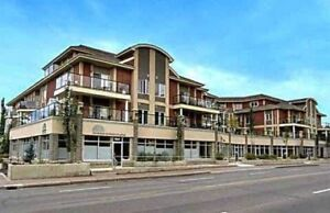 •• AMAZING DOWNTOWN RIVER VALLEY PENTHOUSE ••
