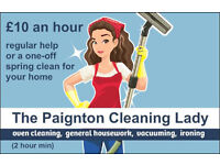 NEED A HAND WITH CLEANING YOUR HOME?