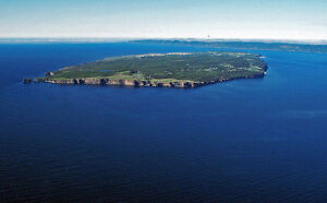 New Price...For Sale 15 acres  Lance Cove, Bell Island, NL