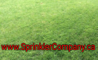 NEW SOD (Grass) installation, 2 year warranty. From $1.2 sq.ft