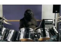 Drum kit wanted!