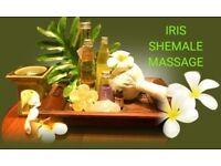 Qualifield Thai massage by Thai Shemale