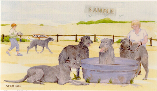 Deerhound Art Print: Off To The Dog Show by UK Artist Sandra Coen  LAST ONE!*
