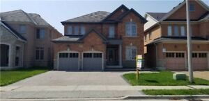 Spacious 5 Bedroom Home With A Finished Basement Apartment!