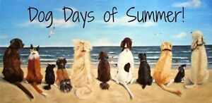 Dog Daycare & Boarding for Small Dogs