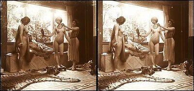 16 Stereofotos french Nude, Jules Richards Atrium, Lot 1, Stereoviews France