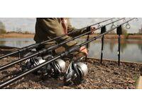 12ft greys carp rod