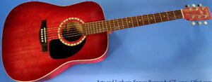 Art & Lutherie Acoustic/Electric Guitar