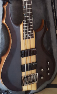 New Bass in New Case (LED Bass by ESP)