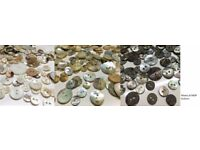 Assorted Buttons Mixed Shell Fastenings Knitting Sewing Beads Scrapbooking Cardmaking 85g 220g 450g