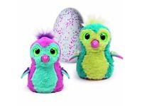 Hatchimals Draggles Teal Egg Argos Reservation code Fort William Highland PH33 6SU