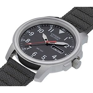 Looking for Citizen Eco Drive, with canvas strap