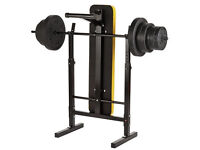 Everlast Folding Workout Bench with 50kg Weights