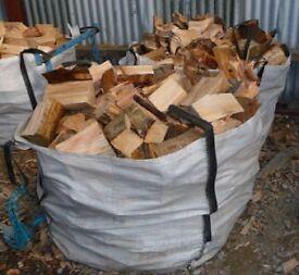 Dry Seasoned Logs for Firewood