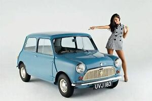 IN SEARCH FOR A CLASSIC MINI 1959-2000