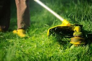 Yard Mowing ( Lawn Care Maintenance ) Hobartville Hawkesbury Area Preview