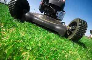Lawn mowing Chatswood Willoughby Area Preview