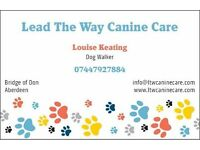 Lead The Way Canine Care - Reliable and Affordable Dog Walker for Aberdeen City & Shire