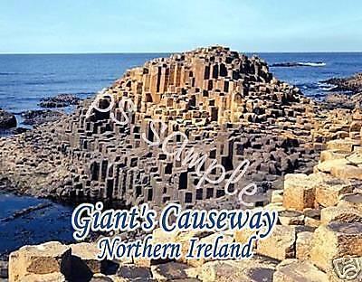 Ireland Giants Causeway  Travel Souvenir Flexible Fridge Magnet