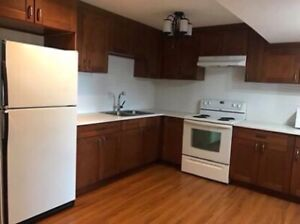 Basement suit in great location!