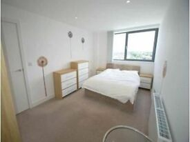 LARGE DOUBLE ROOM AVAILABLE NOW- NEWLY REFURBISHED FLAT