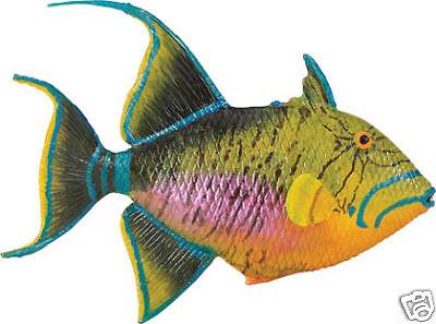 Queen Triggerfish Replica # 259929 ~ FREE SHIP/USA w/ $25+ SAFARI LTD. Products