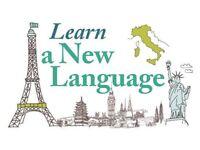 Spanish/Portuguese/Italian classes