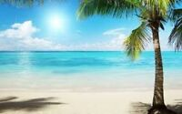 All-inclusive Vacations and Cruises! Travel Deals!