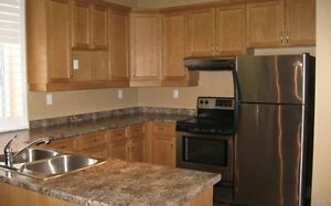 STUNNING 2 Bedroom - Downtown- 1/2 mth free