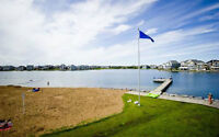 LAKE ACCESS - Room For Rent - Summerside - $600/month