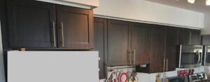 Kitchen Cabinet Doors 21 pcs. 4 x Drawers for sale - dark brown