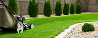 Great price for lawn care
